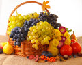 Free Still Life With Autumn Fruits Stock Photo - 33323800