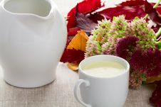A Cup Of Milk And Milk Jug Royalty Free Stock Images