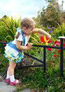Free Little Girl Watering The Grass Stock Photo - 33333700