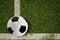 Free Soccer Ball On Green Field Stock Photos - 33332783