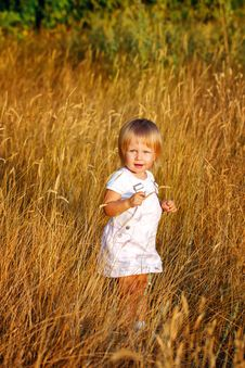 Free Girl And Wheat Ears Royalty Free Stock Photo - 33343325