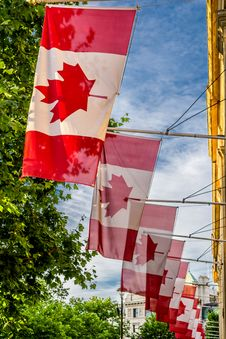Canadian Flags Royalty Free Stock Photos