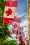 Free Canadian Flags Royalty Free Stock Photos - 33349118