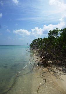 Free Gleyang Coastal Scenery Royalty Free Stock Image - 33355876