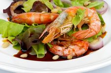 Free Prawns Salad Stock Photos - 33356623