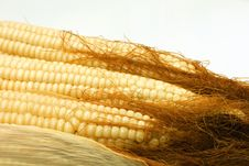 Free Hairy Corn Royalty Free Stock Image - 33365166