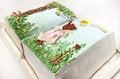 Free Birthday Cake Stock Images - 33370494