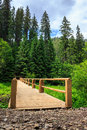 Free New Bridge From Road To Forest. Vertical Stock Photography - 33377772