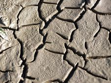 Free Parched Earth With Cracks Royalty Free Stock Image - 33372536