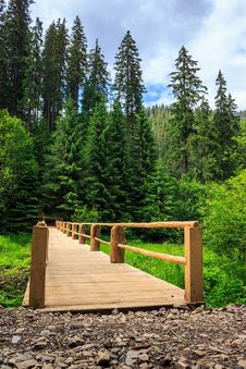 New Bridge From Road To Forest. Vertical Stock Photography