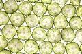 Free Lobule Cucumber Royalty Free Stock Photo - 3341175
