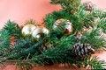 Free Christmas Decoration-pine Tree Royalty Free Stock Photography - 3344807