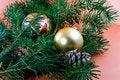 Free Christmas Decoration-pine Tree Royalty Free Stock Photos - 3344828