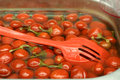 Free Red Marinated Tomatoes Royalty Free Stock Photo - 3347765
