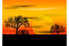 Free Sunset With Trees Royalty Free Stock Image - 3341786