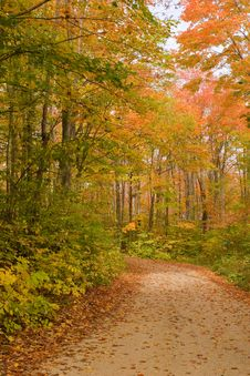 Free Path In Fall Stock Photos - 3342183