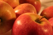 Free Red Apple Closeup Royalty Free Stock Photos - 3342688