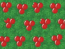 Free X-mas Berry, Vector Pattern Royalty Free Stock Photography - 3343257