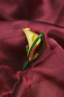 Free A Beautiful Lily Boutonniere Stock Photos - 3343613
