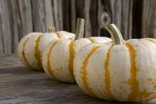 Free White Pumkins Royalty Free Stock Images - 3343999