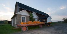 Pumpkins At A Farm Stand Stock Photos