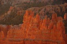 Free Sunrise, Bryce Canyon, Utah Royalty Free Stock Image - 3345026