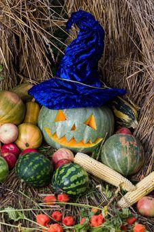 Free Happy Halloween Stock Photo - 3345930