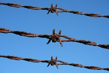 Free Rusty Barbed Wire Royalty Free Stock Photos - 3347828