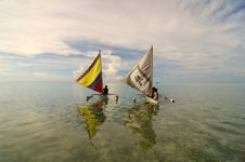 Free Sailing Stock Photos - 3348293