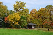 Free Autumn Japanese Garden Royalty Free Stock Photo - 3349995