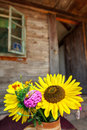Free Flowers And House Stock Images - 33405024