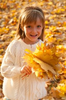 Free Little Girl With Autumn Leaves Royalty Free Stock Photo - 33406515