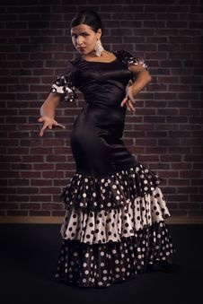 Free Flamenco Dancer Stock Photos - 33461203