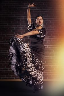 Free Flamenco Dancer In Motion Royalty Free Stock Photo - 33461285