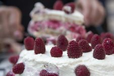 Free Raspberry Cake Fiesta Royalty Free Stock Images - 33462609