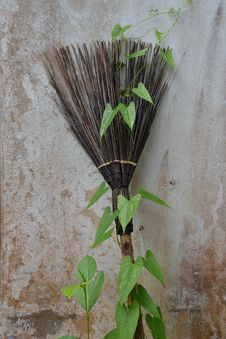 Free Broom Stock Photo - 33467380