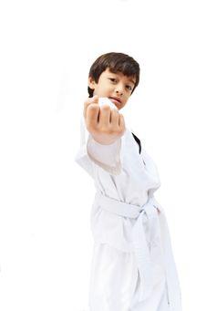 Free Little Tae Kwon Do Boy Martial Art Royalty Free Stock Photos - 33469298