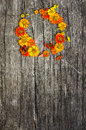 Free Wreath Stock Photo - 33470870