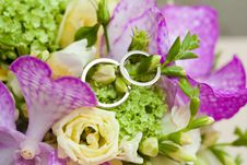 Free Two Wedding Rings Royalty Free Stock Photography - 33474087