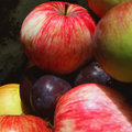 Free Fruits Stock Photos - 33489373