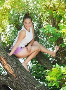 Free Girl On The Tree Stock Images - 33492104