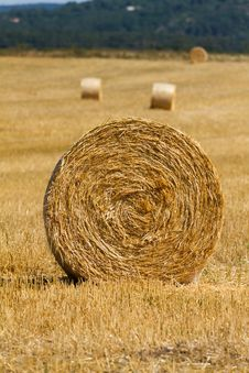 Free Straw Bales Royalty Free Stock Photo - 33498585