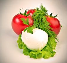 Free Mozzarella Stock Images - 33499244
