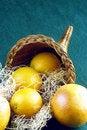 Free Cornucopia With Oranges Royalty Free Stock Photos - 3353968