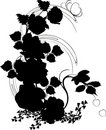Free Silhouette Of Poppy And Rose Stock Photo - 3355430