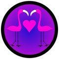 Free Two Flamingos Stock Photos - 3357733