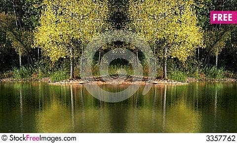 Free Tree Reflections Stock Photography - 3357762