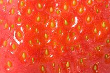 Free Ripe Strawberry Macro Royalty Free Stock Image - 3352006