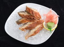 Free Sashimi In Ice Stock Photos - 3353453