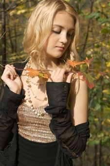 Free Beautiful Blond Girl In Autumn Stock Photography - 3353592